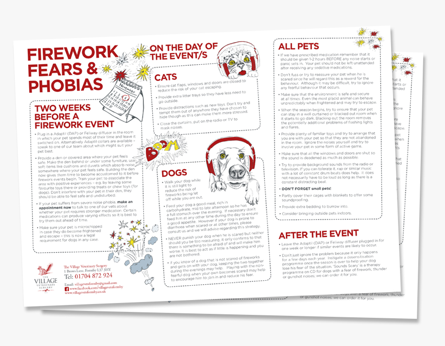 pets-and-fireworks-safety-advice-guide-village-vets-formby-downloadimage