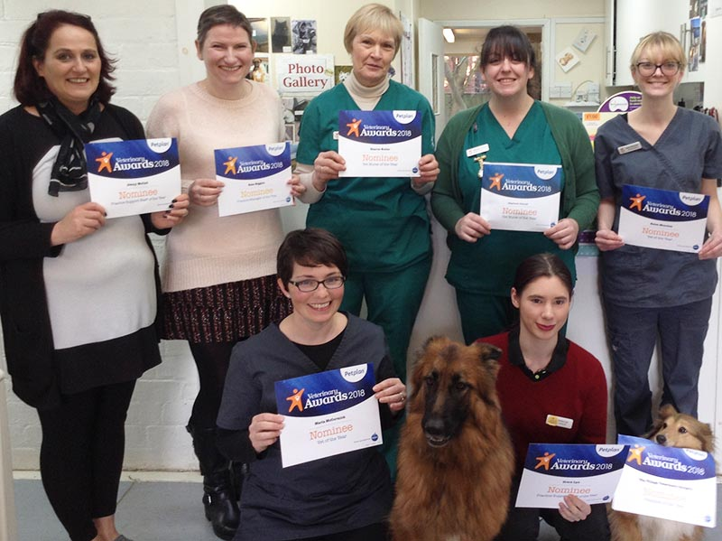 Petplan Awards Clean Sweep for Village Vets' staff